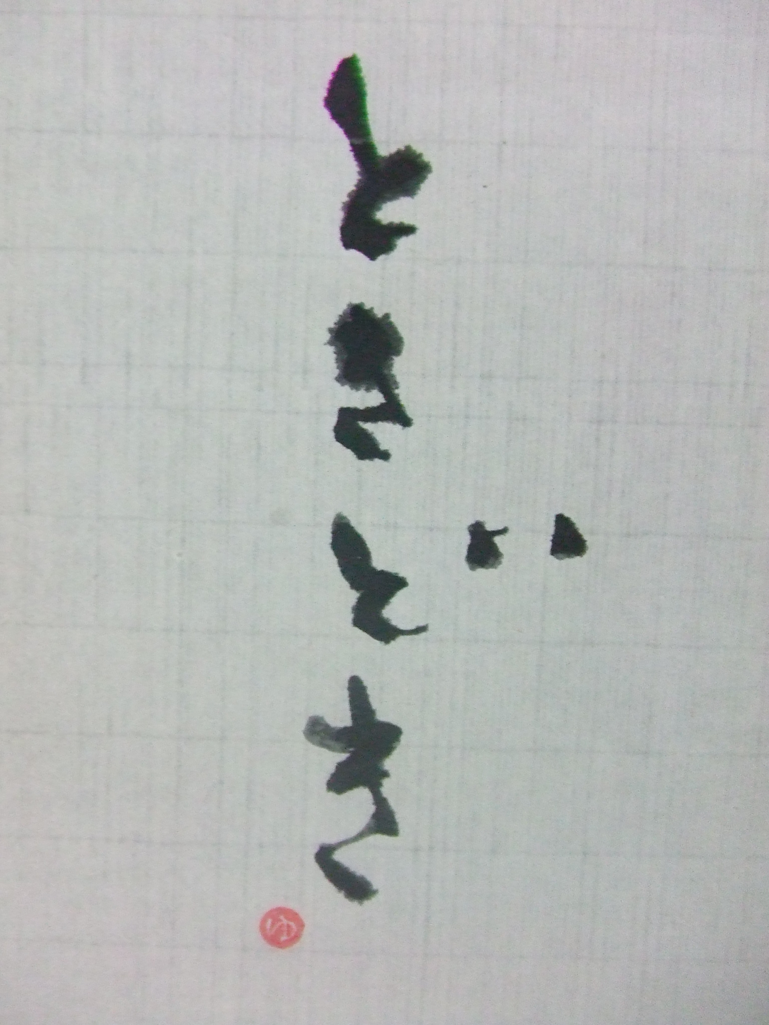 blog20110128.JPG